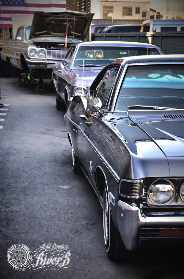 impala_002