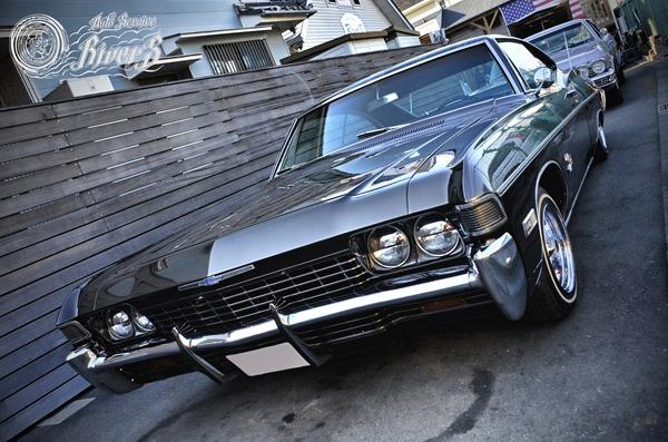 impala_003