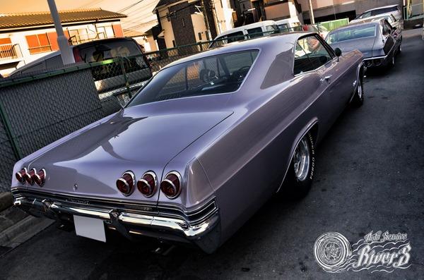 impala_006