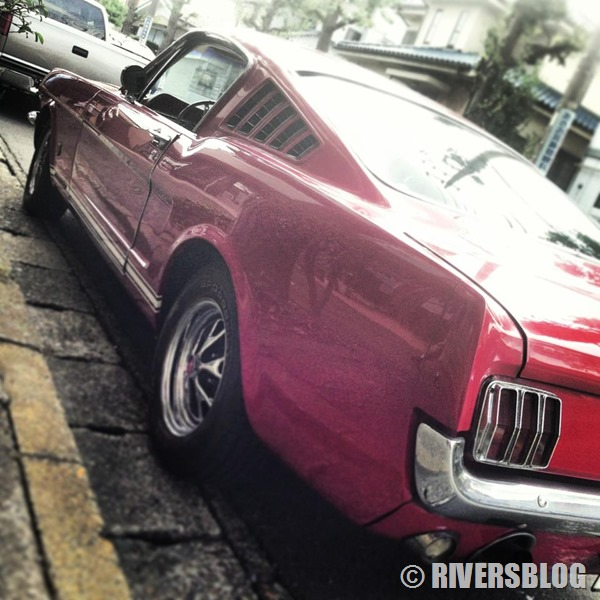 66 Mustang fastback